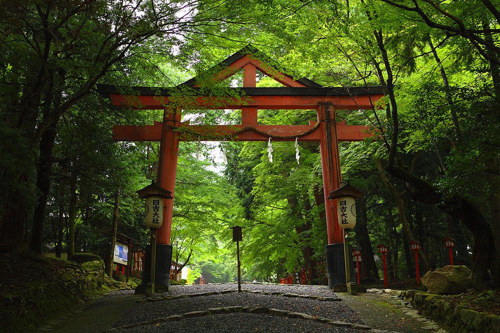 hiyoshi taisha torii gate.jpg