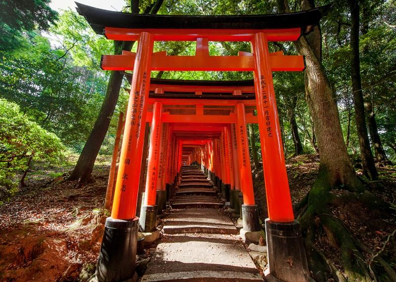 Fushimi-Inari-torii-gates