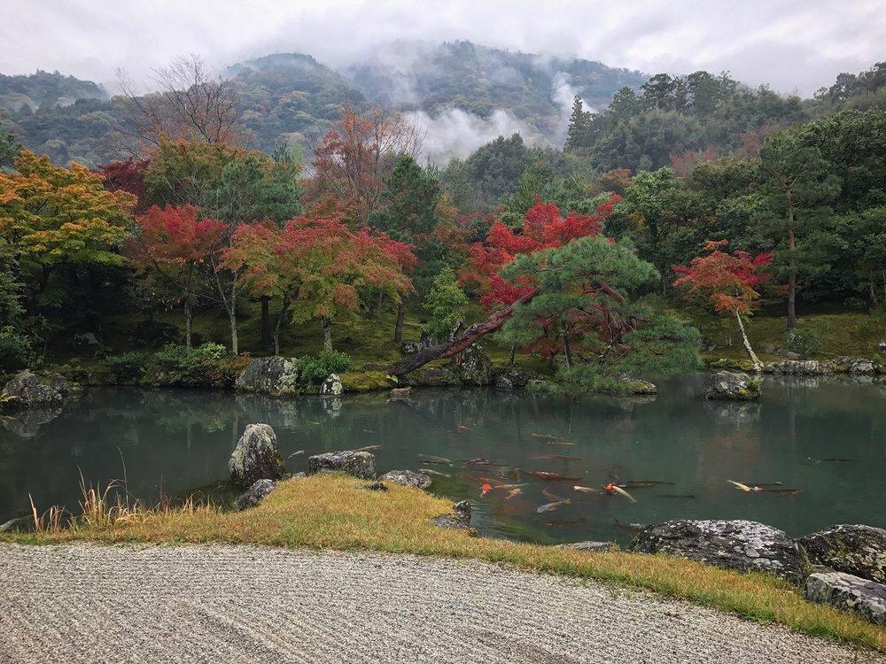 tenryuji autumn.jpg