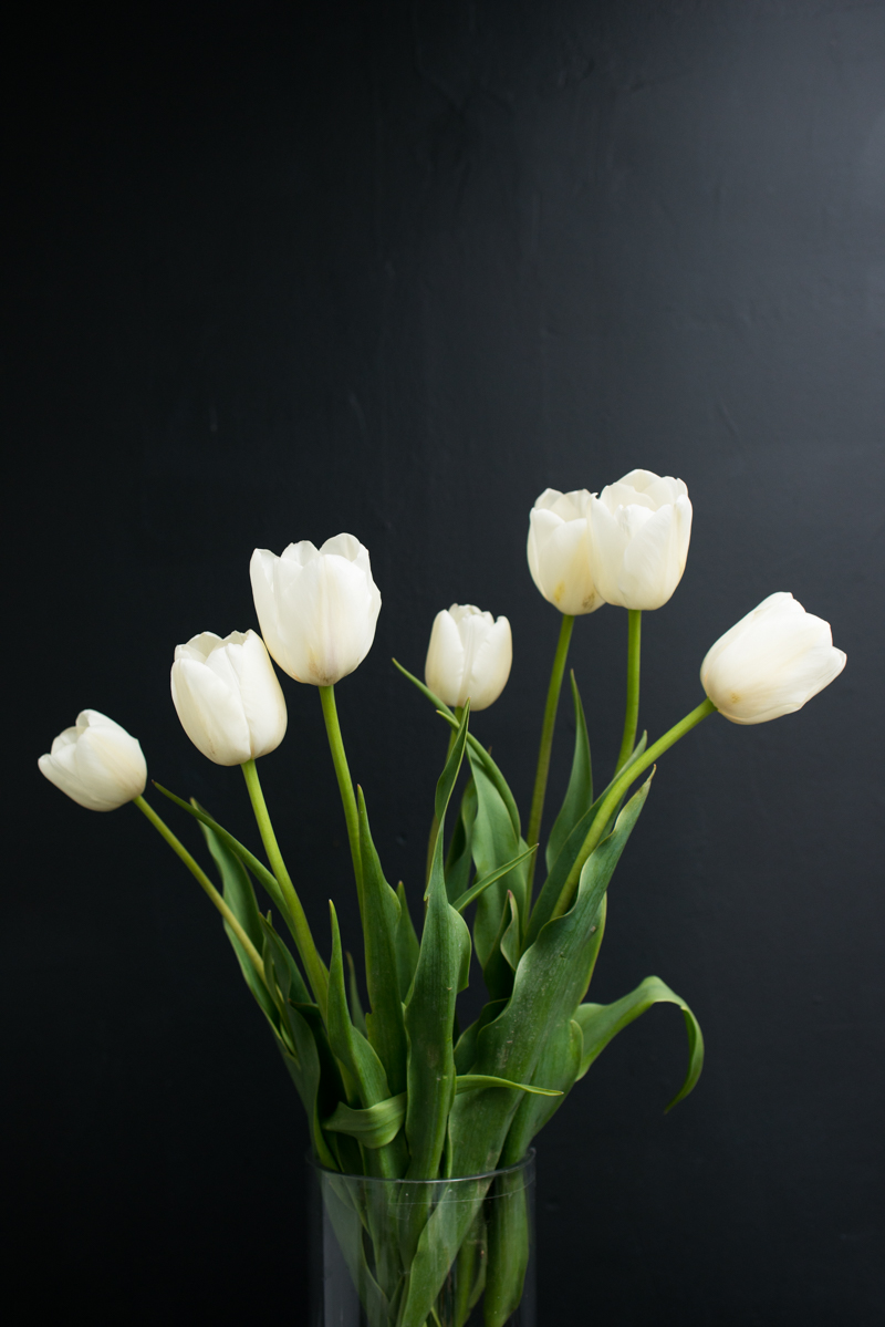 Mission de Flores Blog: Flowers To Give For Sympathy - White Tulips