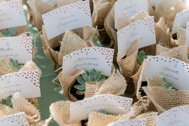 Mini Succulent Souvenirs