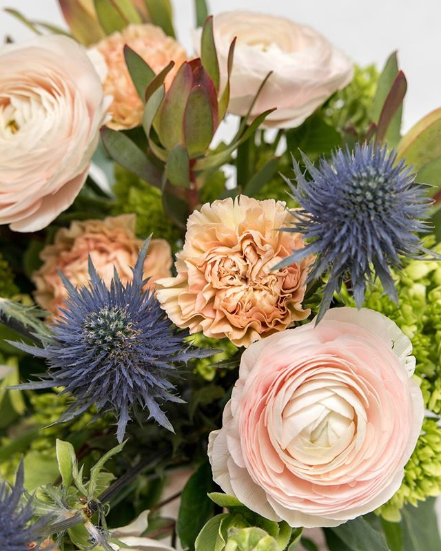 We're suckers for good thistle 👌🏻 Who else is loving spring with us? When the world blooms, so do we. 🌸 . . . . #sanfranciscolove #missiondeflores #sanfrancisco #missiondistrictsf #missiondistrict #flowers #bouquet #bouquetofflowers #sf #sfflorist #sfflowershop #flowershop #thistle