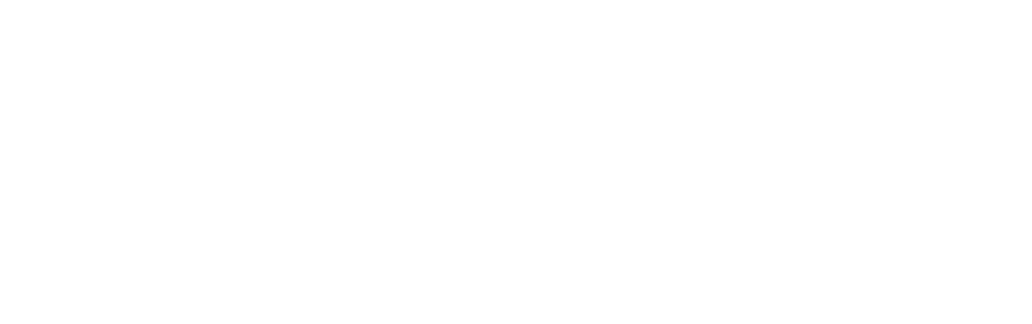 ROGUE Journey
