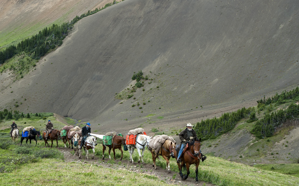 Horse packing Chilcotins