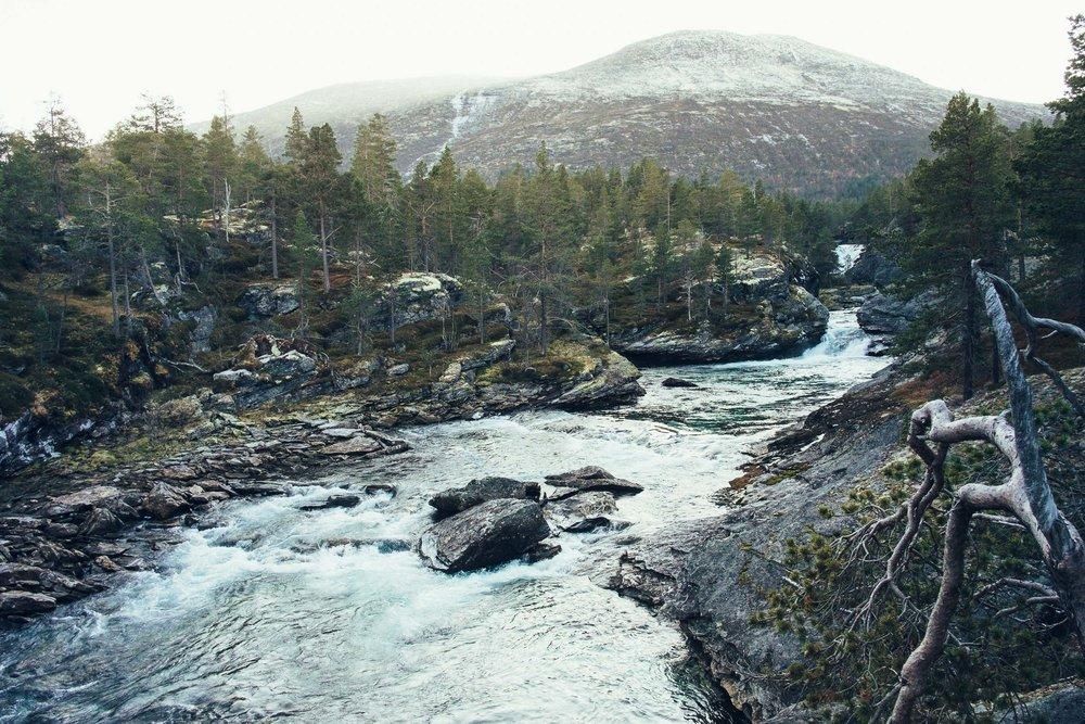 Norway_MaxHartmann-5903.jpg
