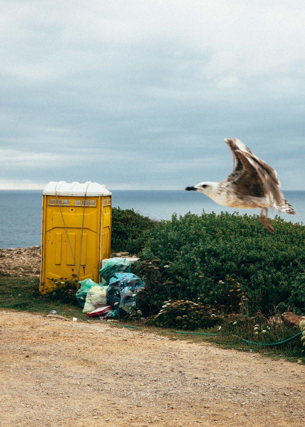 MaxHartmannphoto_Algarve2017-2946.jpg