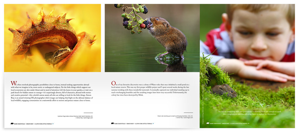 Simon Roy, Yorkshire, York, British, UK, wildlife photographer, Bare Essentials