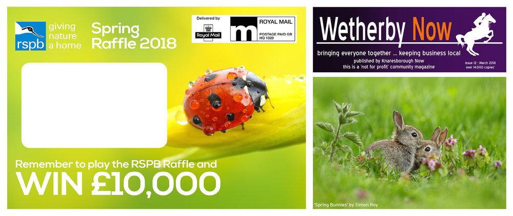Simon Roy, Yorkshire, York, Wetherby, British, UK, wildlife photographer, RSPB, bunnies, ladybird, spring
