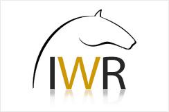 ian williams logo