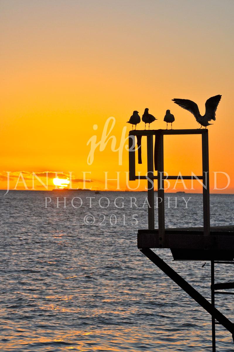 Mallory-Square-Sunset-Landing-DSC_7910.jpg