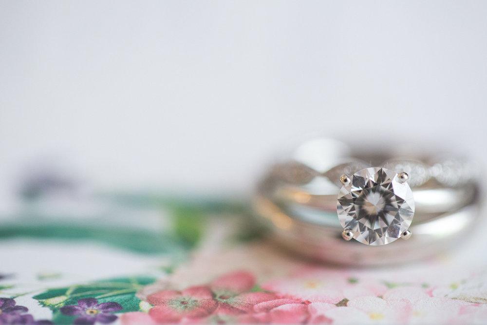 Michigan_Wedding_Photographer_Light_Garden_Photography_3.jpg