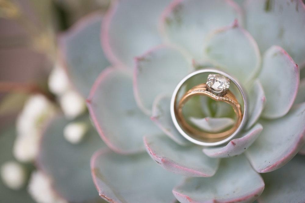 Michigan-Wedding-Photographer-Light-Garden-Photography-12.jpg