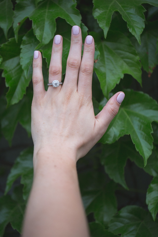 Detroit-Michigan-Wedding-Photographer-Light-Garden-Photography-26.jpg