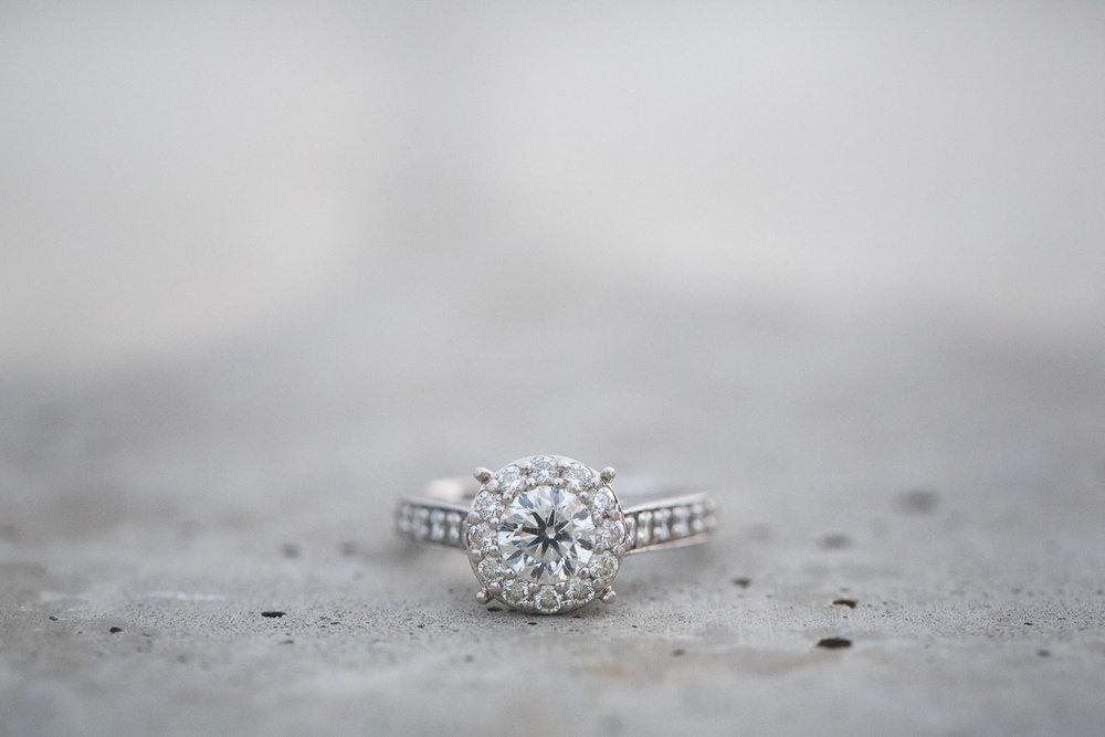 Detroit-Michigan-Wedding-Photographer-Light-Garden-Photography-32.jpg