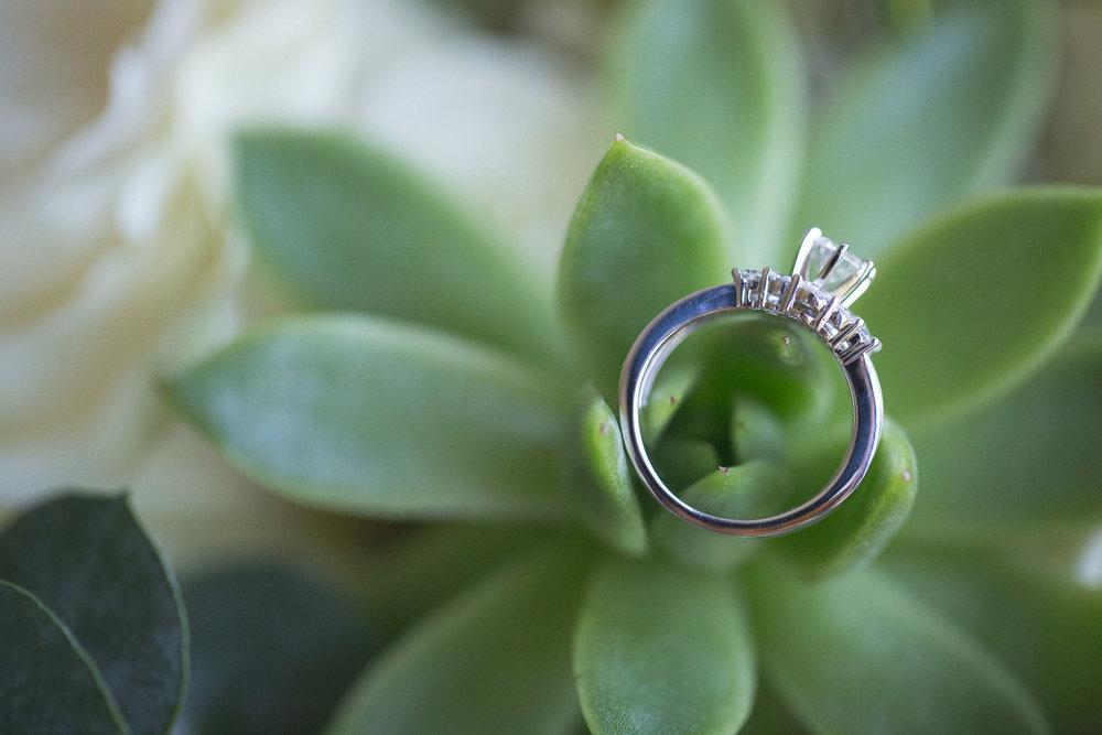 Michigan-Wedding-Photographer-Light-Garden-Photography-2.jpg