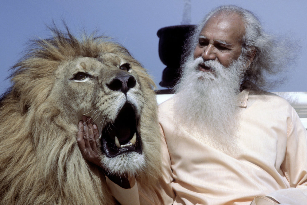 press-Swami-Satchidananda-MGM-Lion.jpg