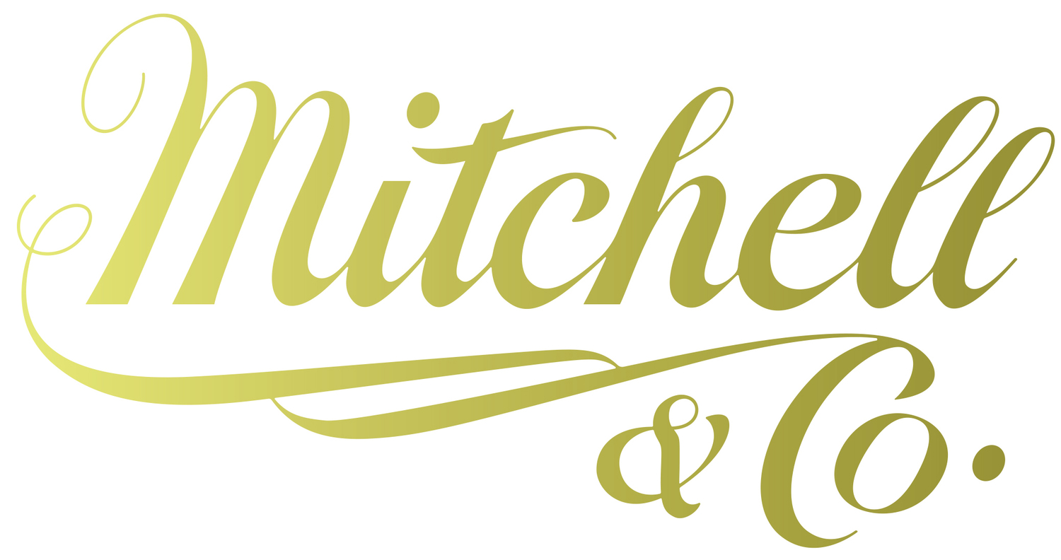 Mitchell and Co. Salon