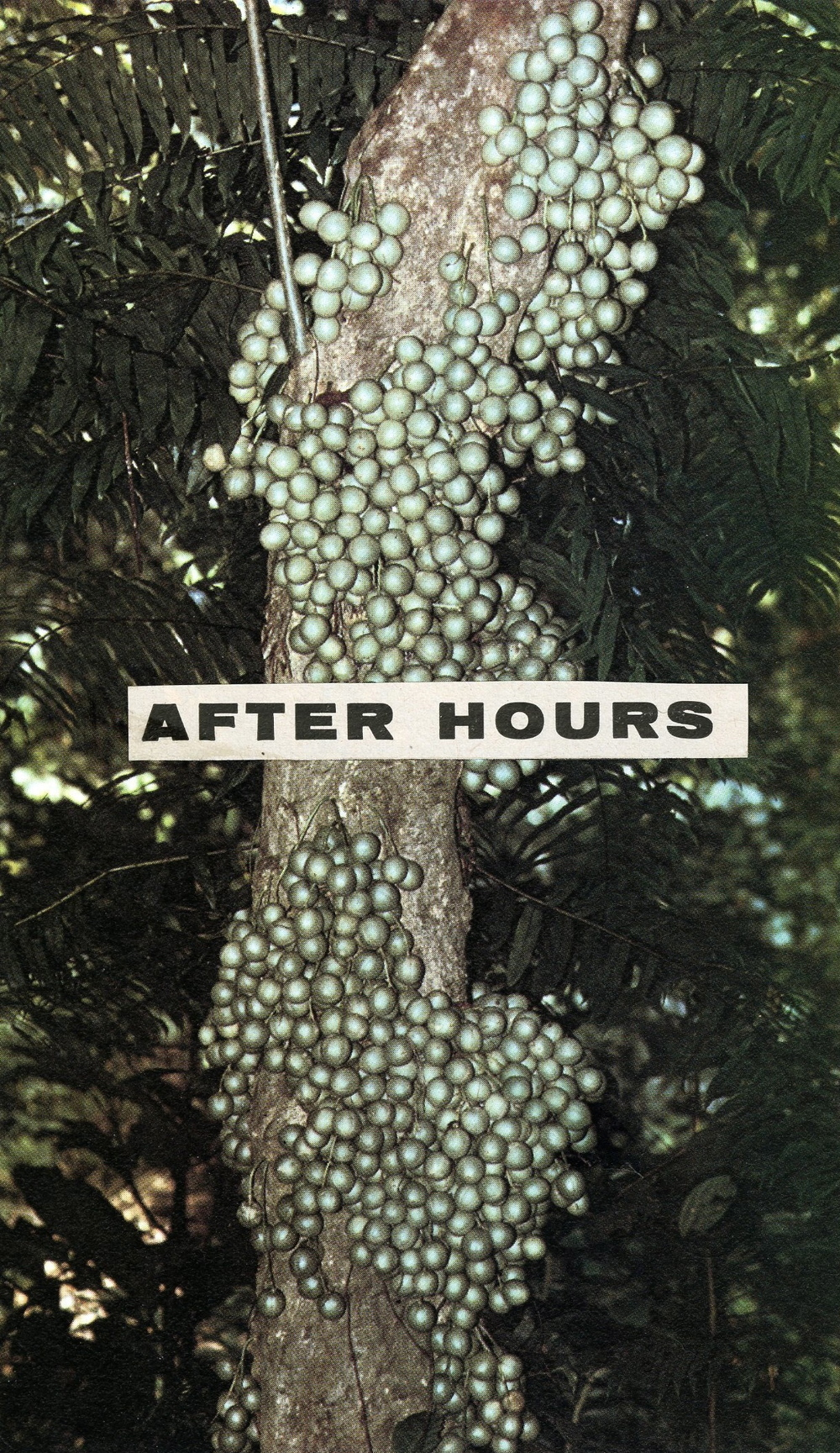 After Hours, 2013.jpg