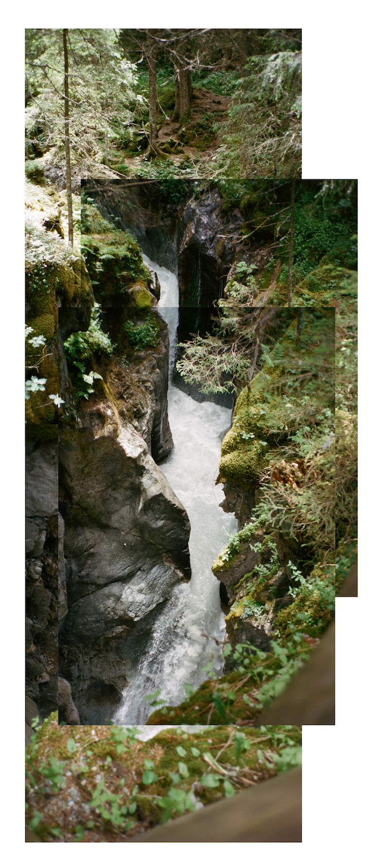 river ravine.jpg