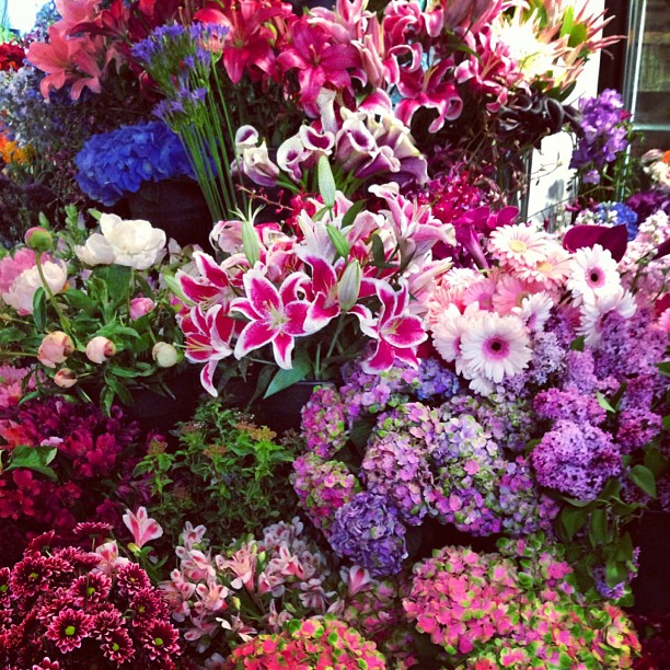 Picking out flowers for the Nantucket store. We are open all weekend for Figawi! (at Flowers On Chestnut)