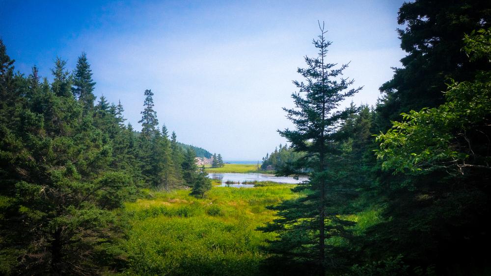 Acadia, Maine-August 01, 2014-1-2.jpg