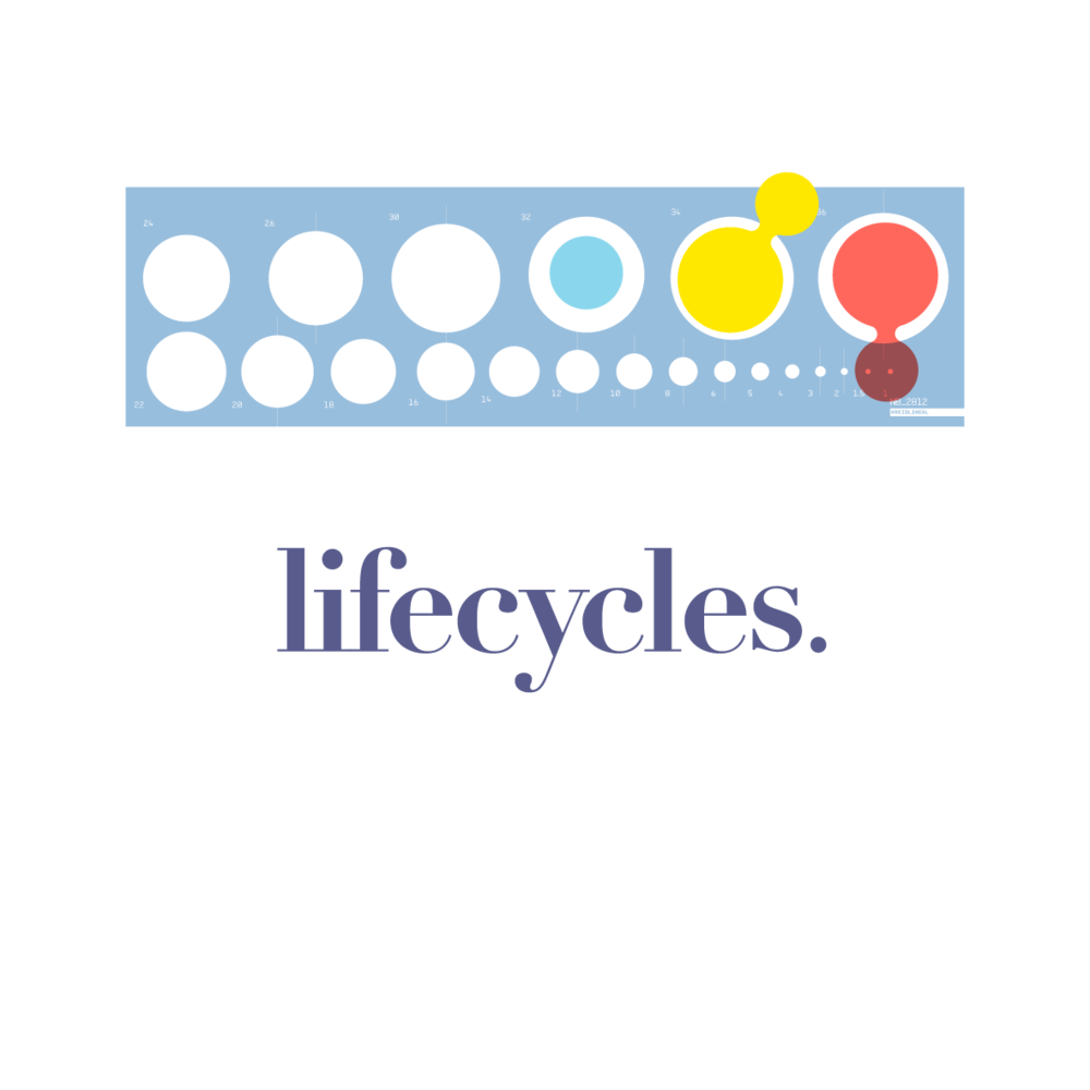 Lifecycle-colour palette-07.png