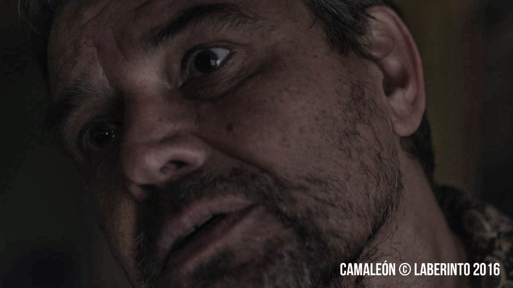 Camaleón_promo-3.jpg