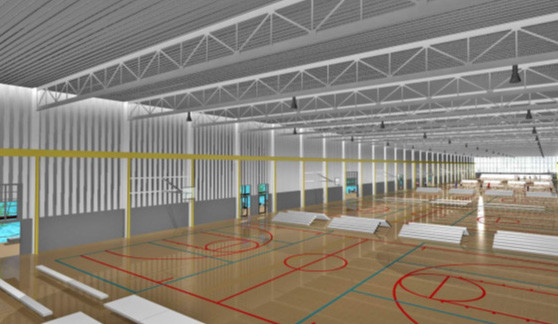 DSC_Basketball_Rendering.jpg