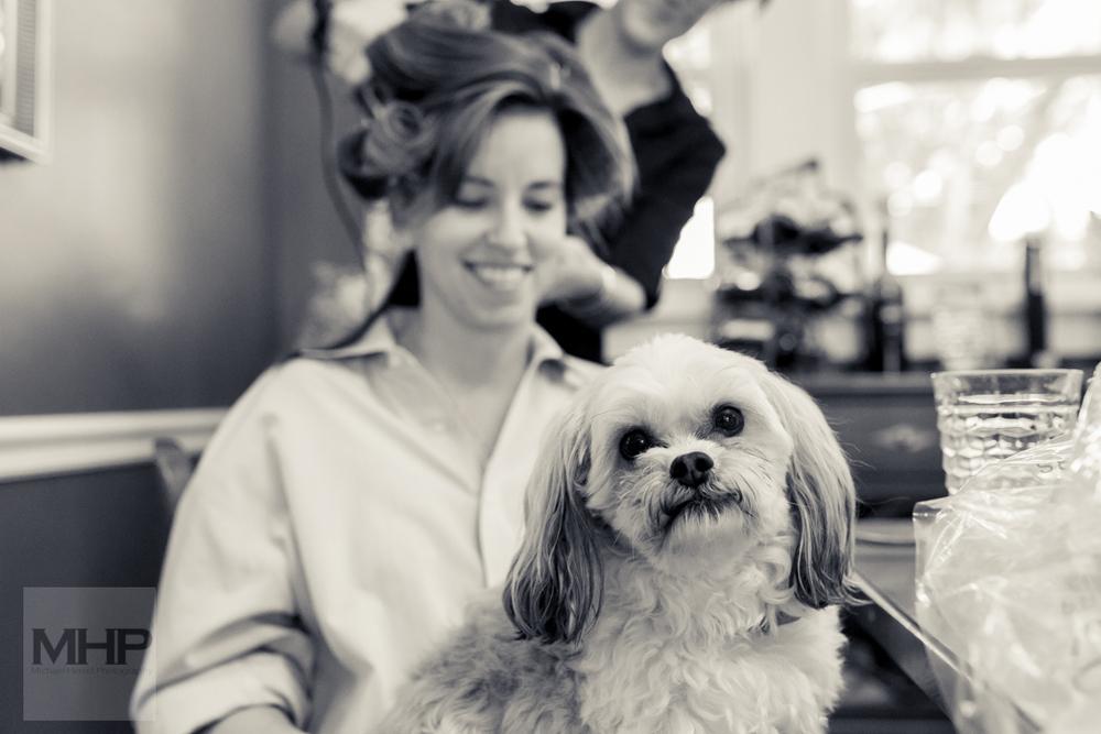 Omaha Wedding Photojournalism Family Dog