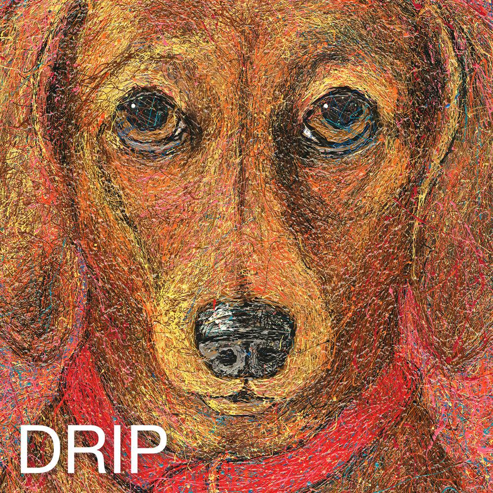 DRIP_home.square.jpg