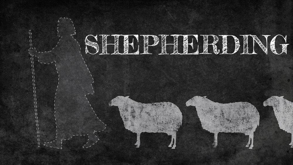 SHEPHERDING SUNDAY CLASS