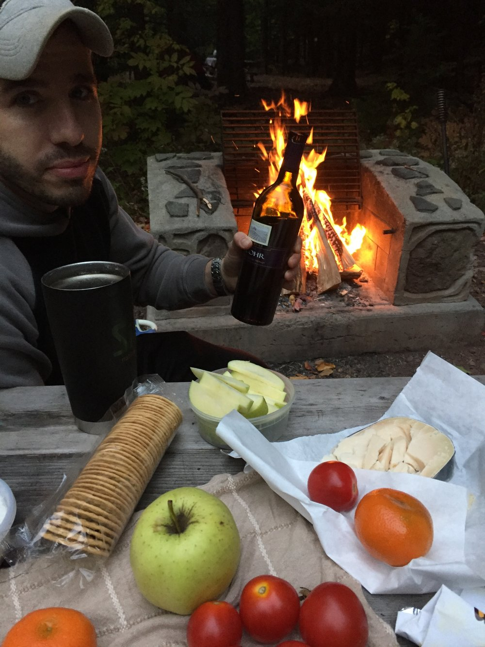 Wine, fruit, cheese, crackers, fire, all set.