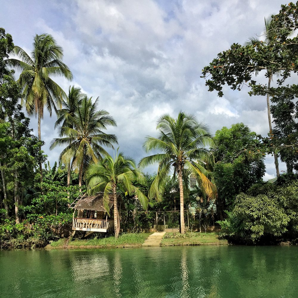 Cruise leisurely along the Loboc River as you enjoy lunch and entertainment.