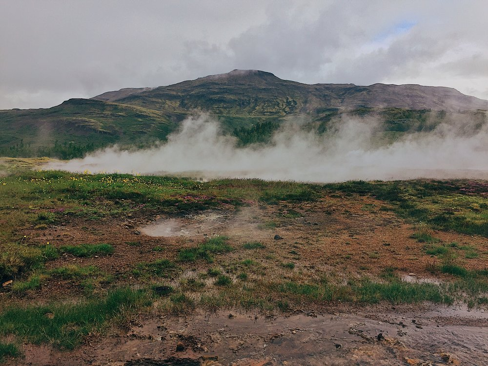 Geothermal geyser activity while the flowers bloom.