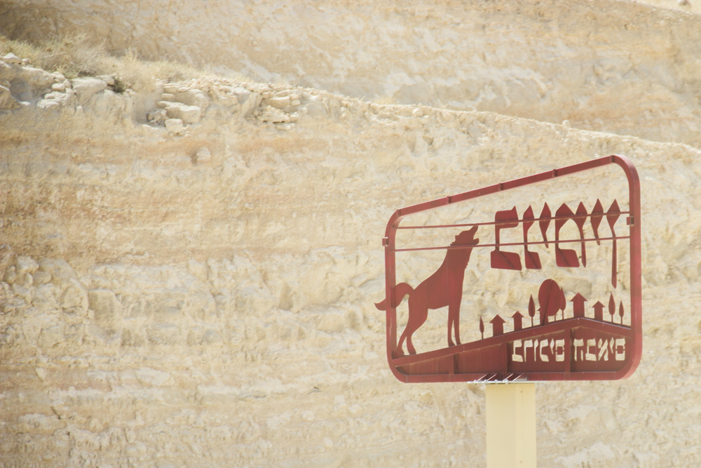 israel1-39.jpg