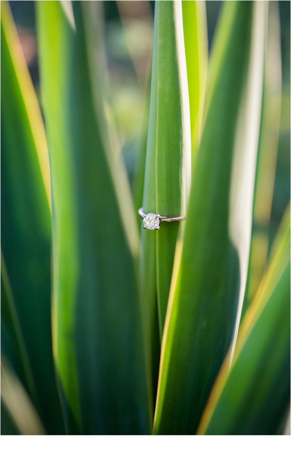 Rainey_Gregg_Photography_St._Simons_Island_Georgia_California_Wedding_Portrait_Photography_1159.jpg
