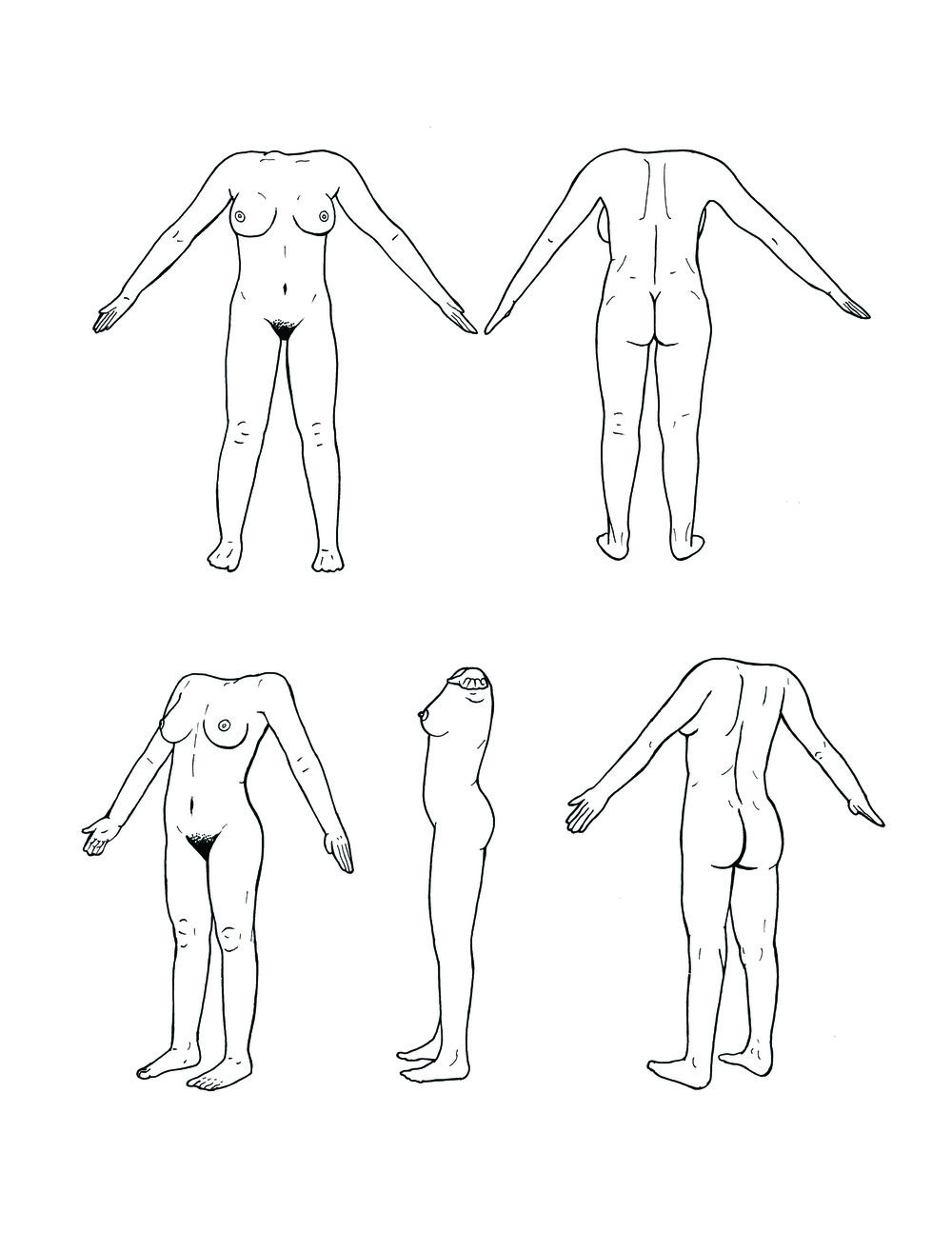 PROPORTIONS OF A HUMAN