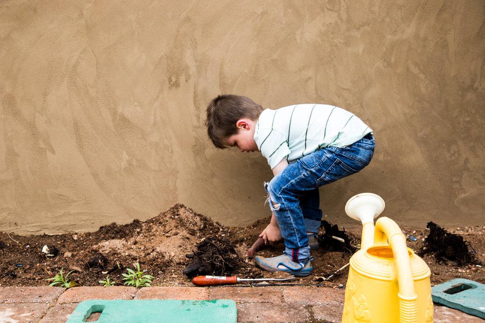 abe gardening2-1.jpg