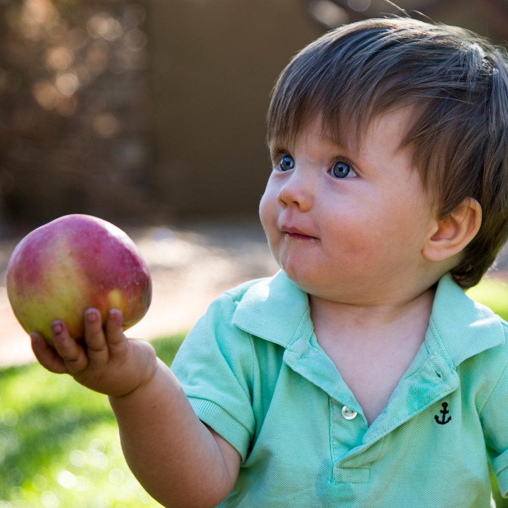 apples 21-1.jpg