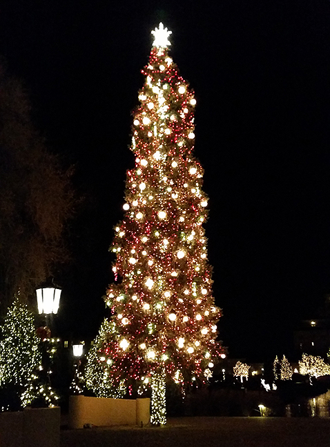 2014-Dec-16-Broadmoor-Decorations-tree-outdoors_72.jpg