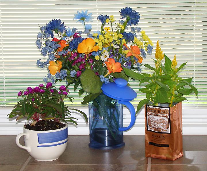 Decorations-Plants-Flowers-coffee-theme-window_72.jpg