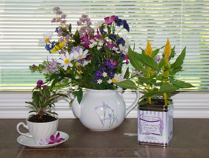 Decorations-Plants-Flowers-tea-theme-window_72.jpg