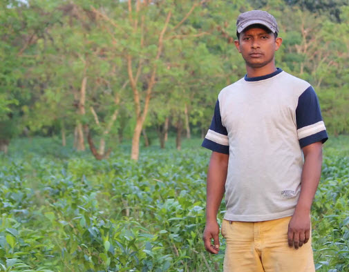 One of BREW's small growers: Pranab Nath in Assam (www.brewteapub.com)
