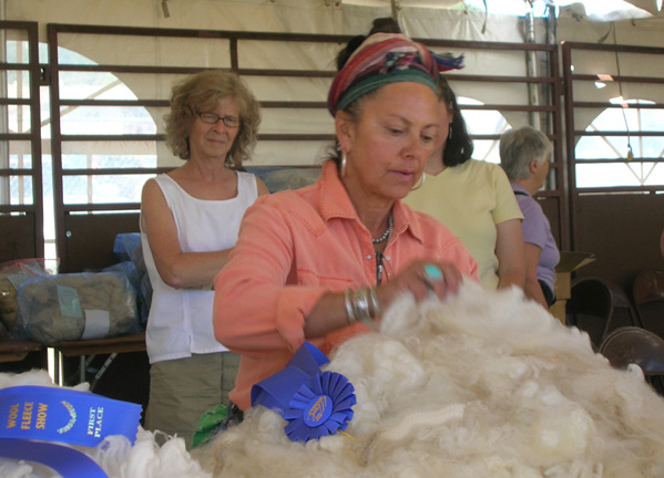 Estes Park 08 June 5995 wool judge_96.jpg