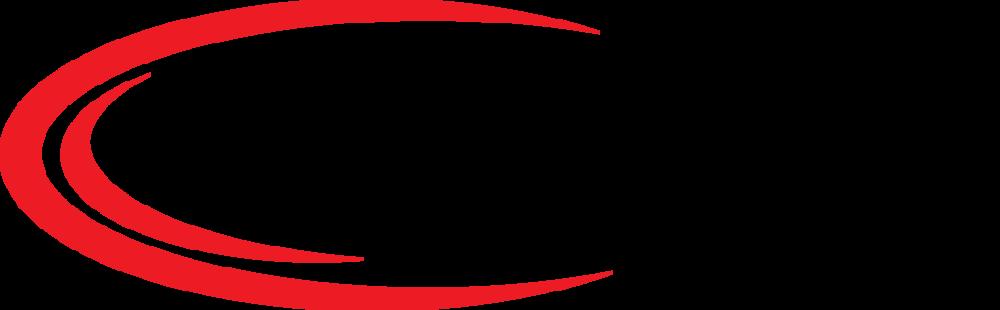 c_DS_logo_hor (1) (1) (1) (1).png