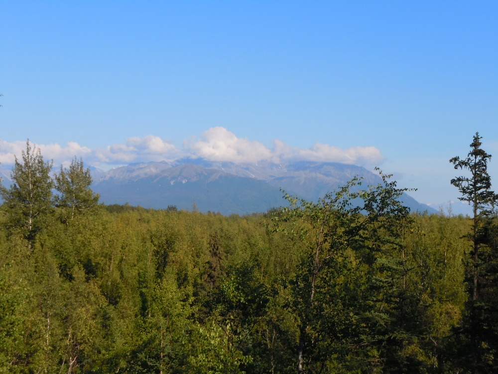 Lazy Mountain and Matanuska Peak from the Cottage patio