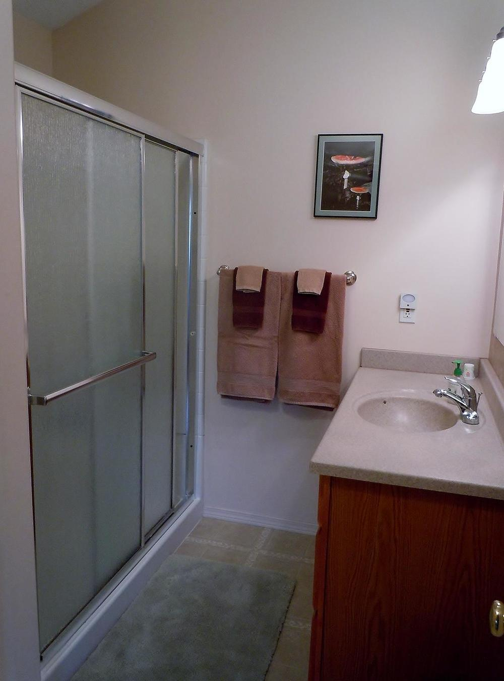 Upstairs ensuite bathroom with large shower.