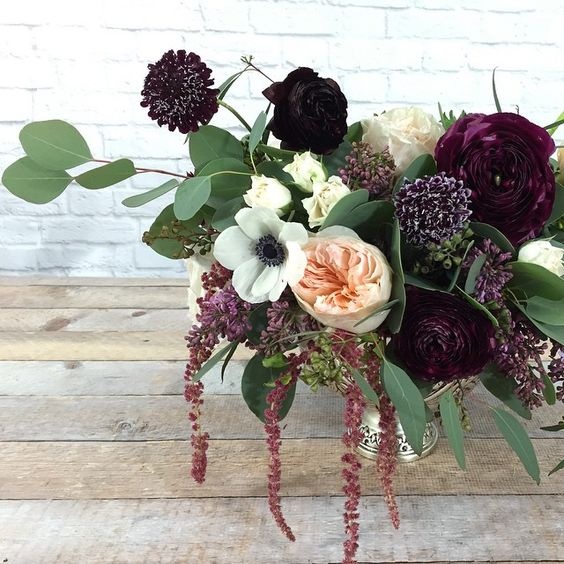 Burgundy Scabiosa  (dark red flower with white tips)