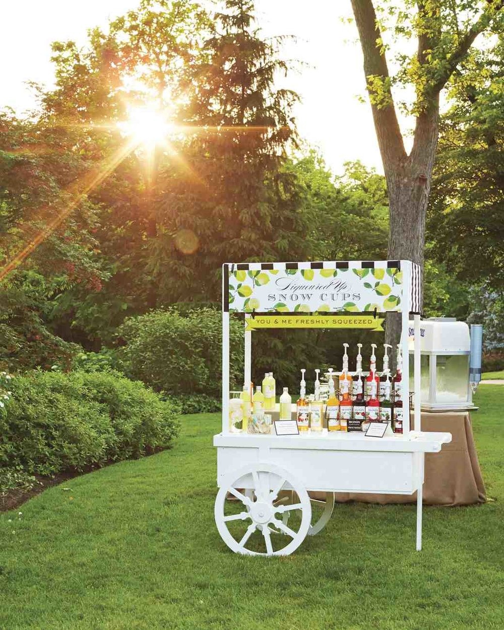 merin-ryan-real-wedding-custom-snow-cone-cart_vert.jpg