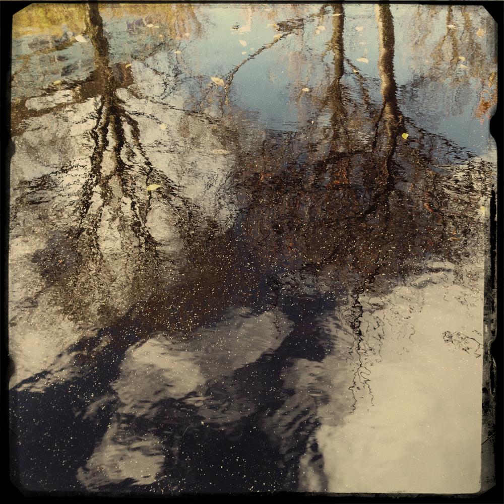 reflect copy.jpg